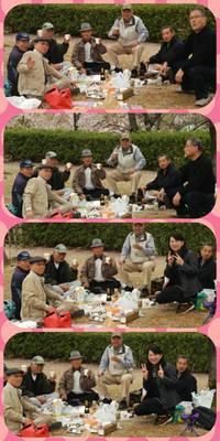 北九州大学同窓会兵庫支部「「歩こう会♡姫路城お花見」