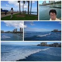 ハワイ旅行(4月8日~15日)14日・15日 帰国へ