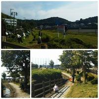 四つ池自治会清掃活動に参加しました。