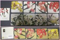 オーストラリアのお土産にお花のコースターいただきました