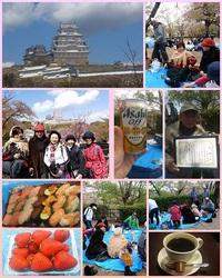 姫路城は葉桜でした。