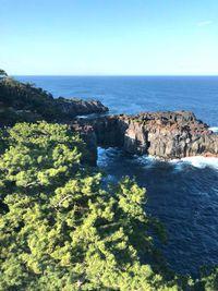 城ヶ崎海岸の吊り橋!