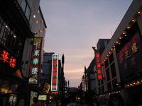 拡大交流委員会珍道中~サマコンへの道~ 中華街編