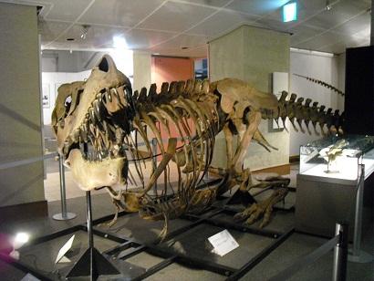 札幌☆北海道大学キャンパス クラーク像・総合博物館