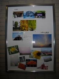 Photo  Circle 「ハレの日」