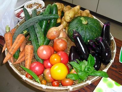 食育セミナー in 仁色ふるさと農園