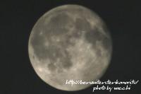 月齢15.5(大潮)満月ちょっと欠け・・・
