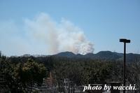 姫路市広畑区で山火事・・延焼中