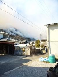 姫路市広畑区京見山の山火事・・続報