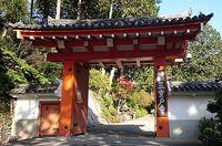 三室戸寺は銀杏