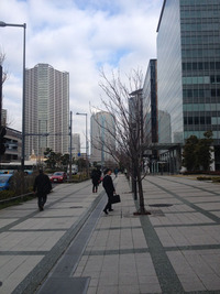 東京での生活が始まりました。