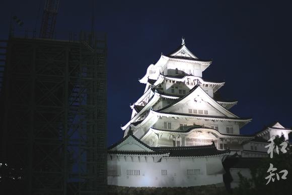 平成22年姫路城花明かり夜桜会