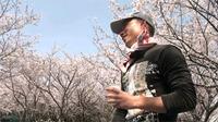 caucau花見大会2011