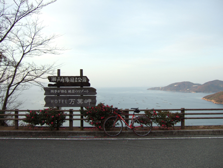 万葉岬をガッツリ上りました。