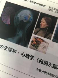 脳科学と色。