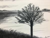 白と黒の琵琶湖。