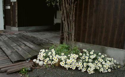 ガレージの花壇H2804