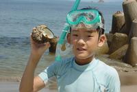鳥取の海の生き物たち