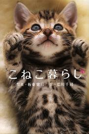 iPhone Ds App日記【20090313-14】