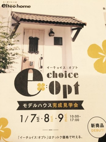 「e choice: Opt」