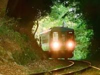 「北条鉄道の緑のトンネル」(北条鉄道:播磨横田駅・網引駅周辺)