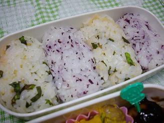 野菜オンリーベジ弁当