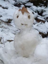 雪だるまの気持ち