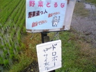 石川五右衛門と果物泥棒