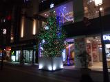 姫路駅前に、クリスマスツリー初お目見え