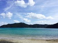 奄美大島でいのちのしま