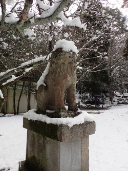 神秘的な雪の宮島に出会えました♪