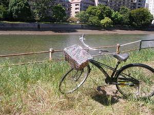 ひねりてのたまごシリーズ、自転車かごカバー登場!!(後編)