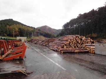 兵庫県産木材産地見学ツアーのご案内!