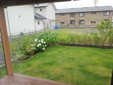 HK町坪の家の庭①