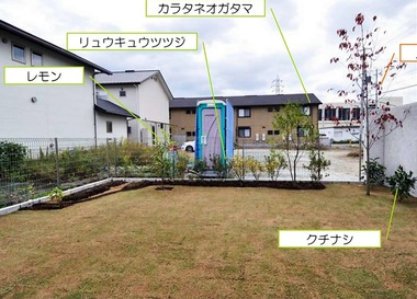 HK町坪の家の庭当初