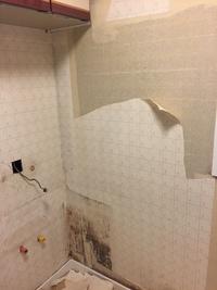 洗面所、クロス貼替え