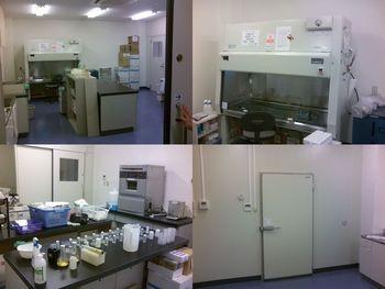 微生物衛生研究室 完成!
