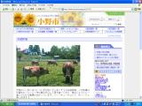 ジャージー牛専用、播磨に5万坪の大牧場