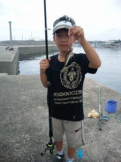 江井島で釣り、大漁!