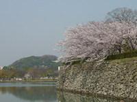 姫路城の堀めぐり