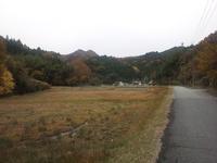 夢前川から坪川沿道(2012/11/24)