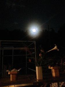 9月号の3  いろいろ催し物と中秋の名月