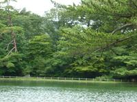 水辺の公園3