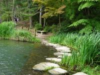 水辺の公園4