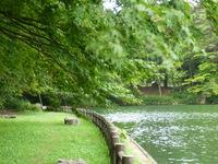 水辺の公園5