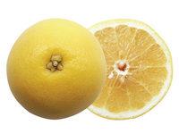 「2月26日はフロリダグレープフルーツの日 。」