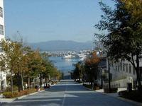 「函館にある坂で一番有名な八幡坂。」