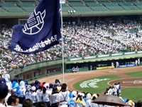 「夏の高校野球兵庫大会決勝戦」