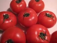 トマトすきやき♪