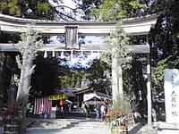 【高知2】土佐神社~霧の森